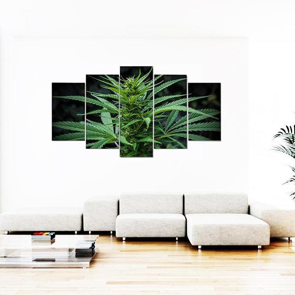Tableau Rasta  Tête De Cannabis