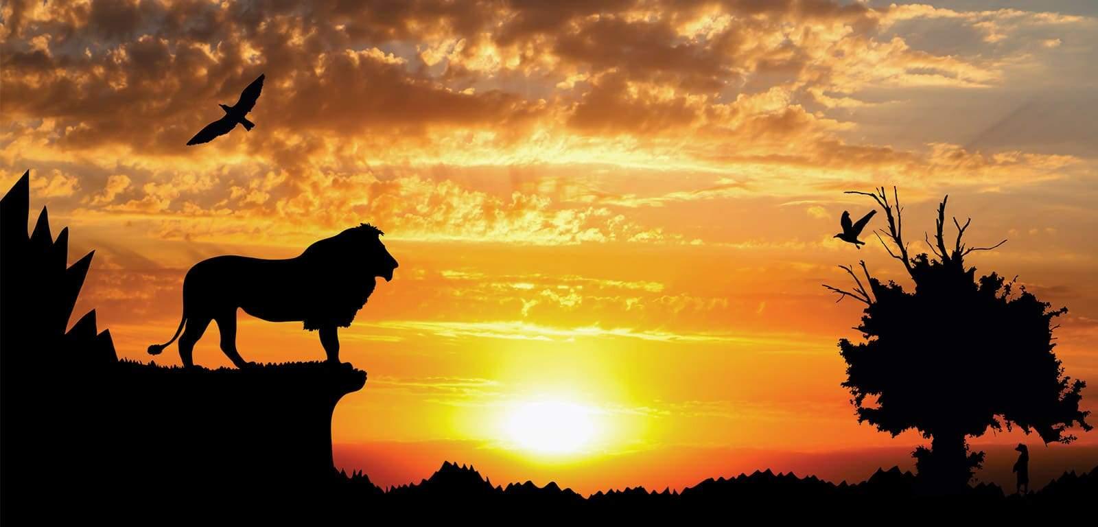 Paysage-de-l'afrique-au-couché-du-soleil-avec-un-lion-installé-en-hauteur-et-des-oiseaux-et-singes.